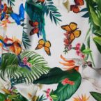 Vlinders & Vogels